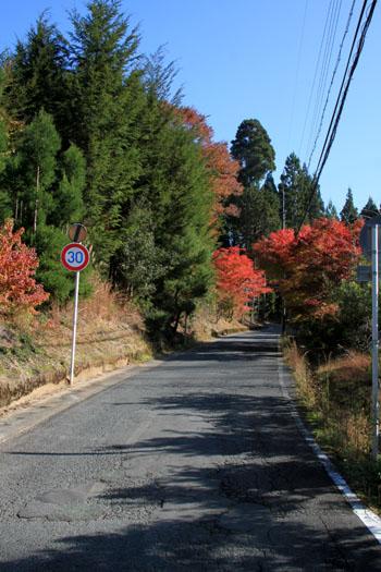 紅葉探訪14 京見峠から杉坂_e0048413_18333697.jpg