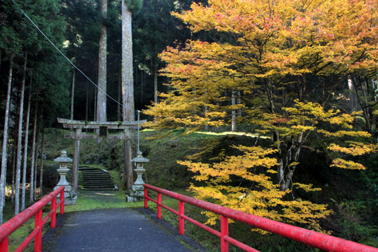 紅葉探訪14 京見峠から杉坂_e0048413_18342998.jpg