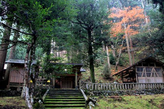 紅葉探訪14 京見峠から杉坂_e0048413_18345448.jpg