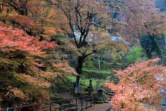紅葉探訪14 京見峠から杉坂_e0048413_18353999.jpg