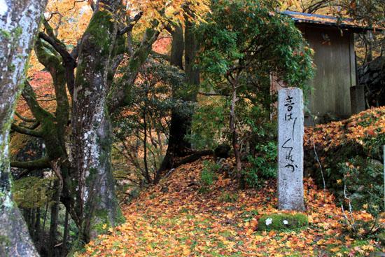 紅葉探訪14 京見峠から杉坂_e0048413_1835534.jpg