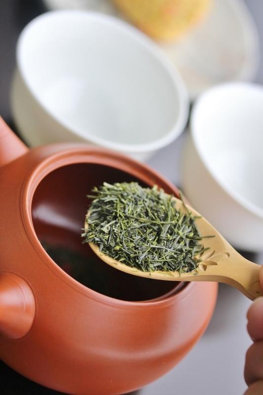 瀬戸「知る!楽しむ!日本茶の魅力」 11月_b0220318_06455863.jpg