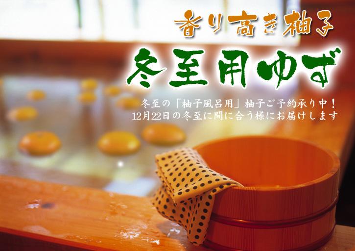 冬至の「柚子風呂」用柚子(ゆず)ご予約承り中!数量限定につき、お急ぎください!_a0254656_1624613.jpg
