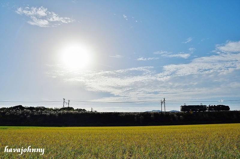 朝日を浴びて~SL北びわこ号~_c0173762_2343687.jpg