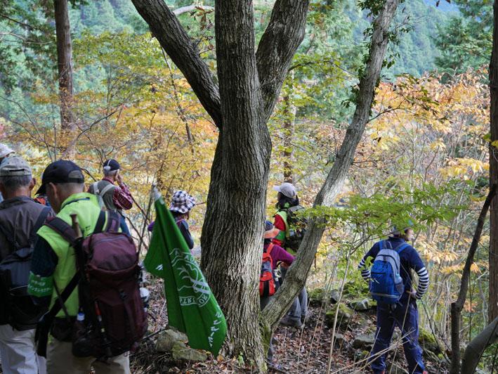 「森林探訪会」に参加、深秋の丹沢の紅葉を満喫11・20_c0014967_21282578.jpg