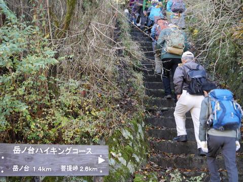 「森林探訪会」に参加、深秋の丹沢の紅葉を満喫11・20_c0014967_21284755.jpg