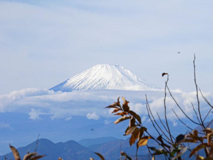 「森林探訪会」に参加、深秋の丹沢の紅葉を満喫11・20_c0014967_21352783.jpg