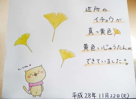 黄色いじゅうたん_b0364195_10113825.jpg