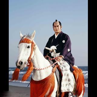 馬に乗りに行こう!_c0226202_22412038.jpg