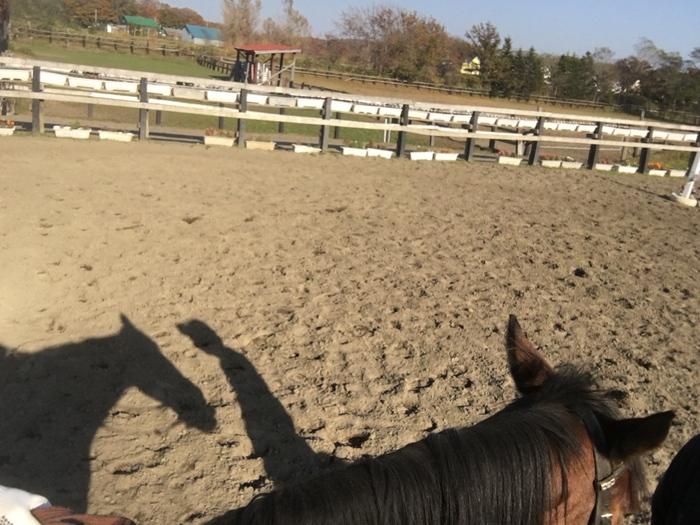 馬に乗りに行こう!_c0226202_22582775.jpg