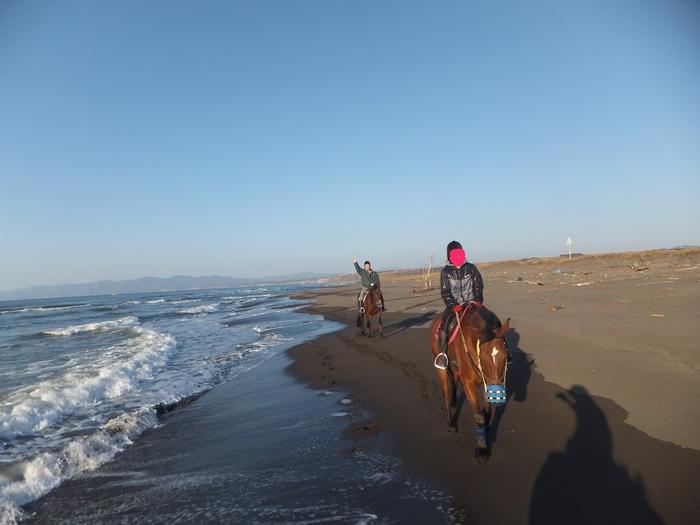 馬に乗りに行こう!_c0226202_23151533.jpg