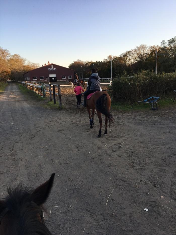 馬に乗りに行こう!_c0226202_23245486.jpg