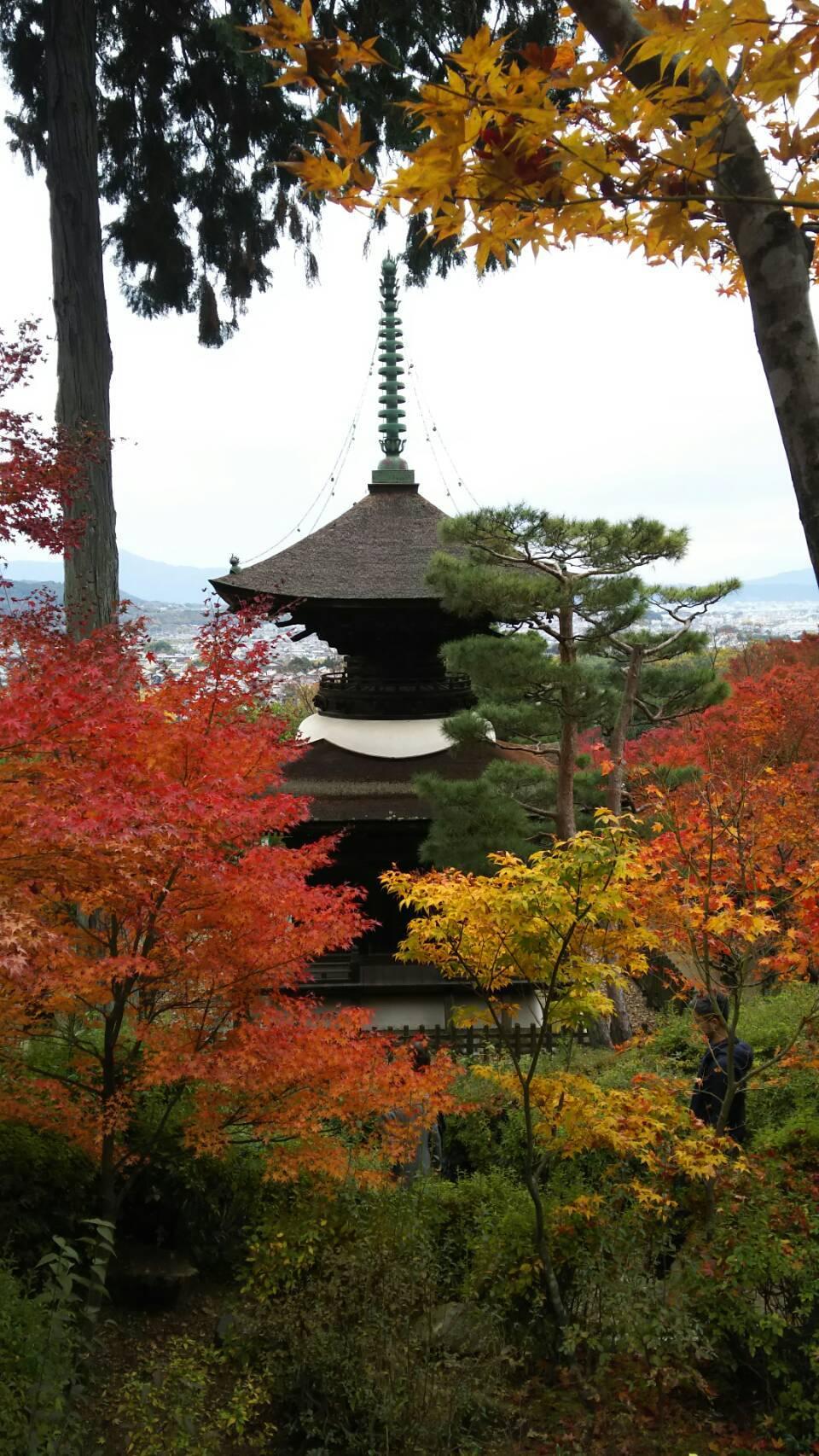 紅葉の京都に_f0316507_15265438.jpg