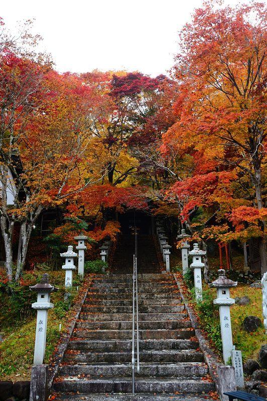 2016京都の紅葉@八木 西光寺_f0032011_18134704.jpg