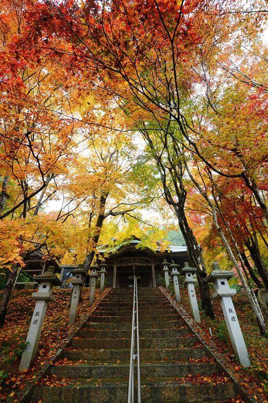 2016京都の紅葉@八木 西光寺_f0032011_18134801.jpg
