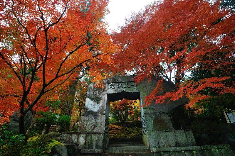 2016京都の紅葉@亀岡 苗秀寺_f0032011_19212735.jpg