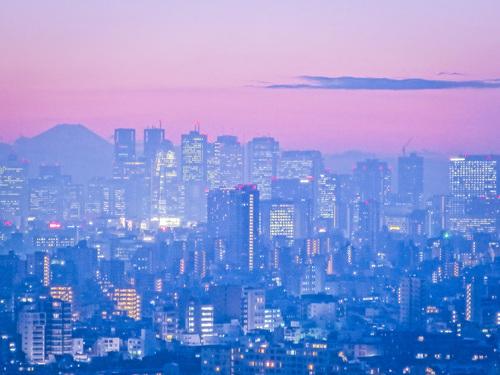 2016.11.22文京シビックセンターからの夕景・夜景_e0321032_23451119.jpg