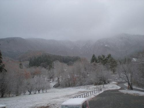 雪_b0365347_835299.jpg