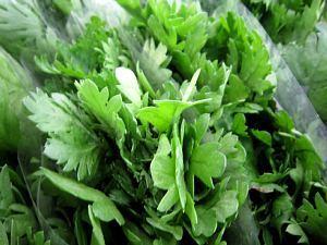 本日の葉物野菜_c0141652_12455264.jpg