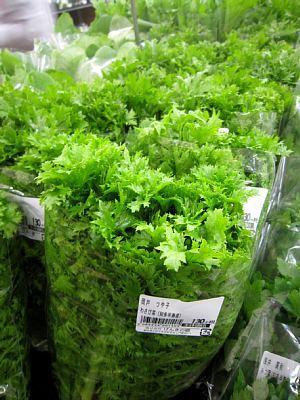 本日の葉物野菜_c0141652_12460864.jpg