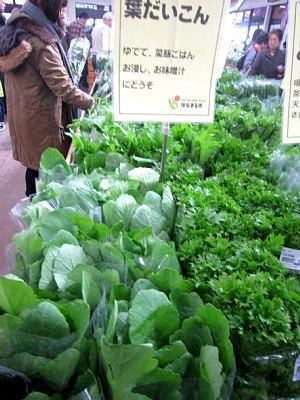 本日の葉物野菜_c0141652_12463163.jpg