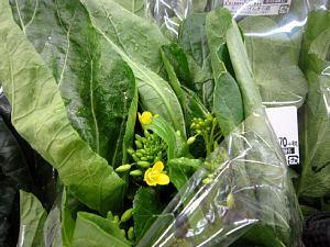 本日の葉物野菜_c0141652_12463209.jpg