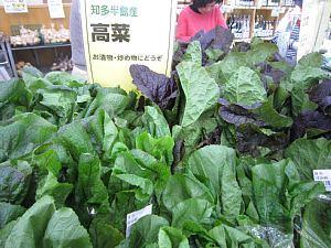 本日の葉物野菜_c0141652_12463367.jpg