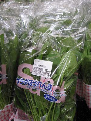 本日の葉物野菜_c0141652_12465237.jpg