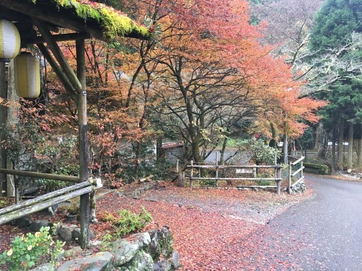 京都出張と、ちょっと心配なR80_f0310771_00031509.jpg