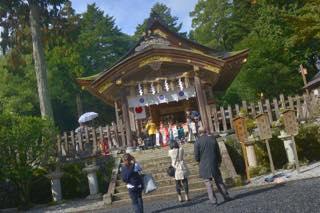 11月に入り紅葉撮影の最後は毎年のように.....京都への...._b0194185_22553889.jpg