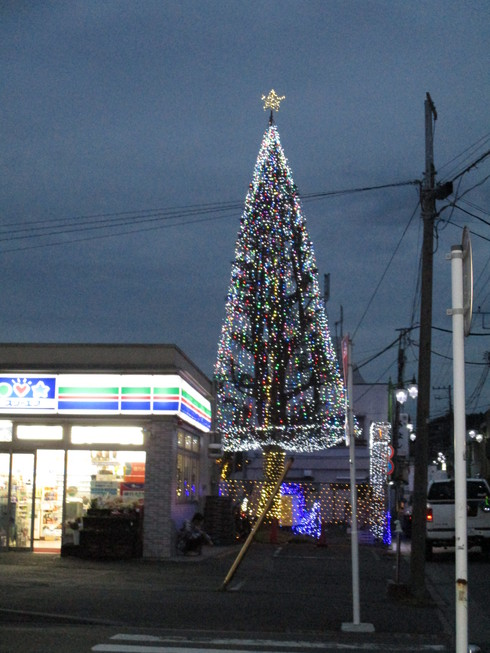 もうすぐクリスマス!_e0190287_16434745.jpg