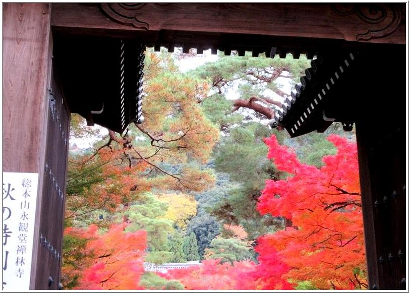 南禅寺からぶらぶら、永観堂の紅葉_b0104092_10453276.jpg