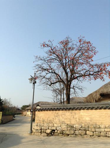 ポジャギ作家 李京玉と巡る韓国 (尚州・慶州・安東)3日目② _c0185092_20125485.jpg