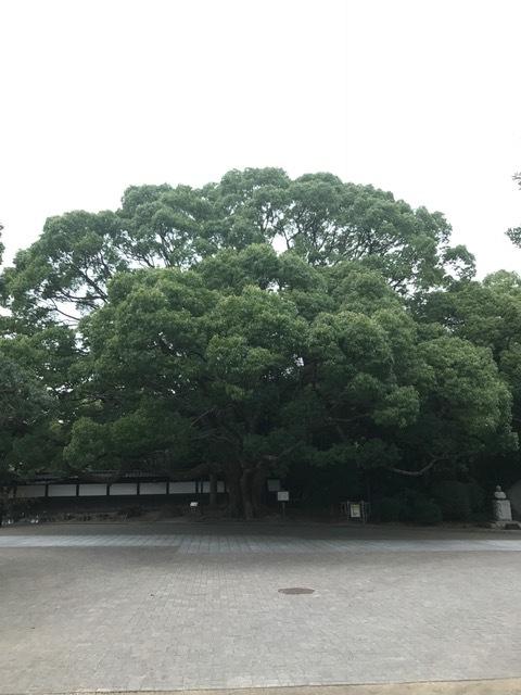須磨離宮公園_f0204295_19270466.jpg