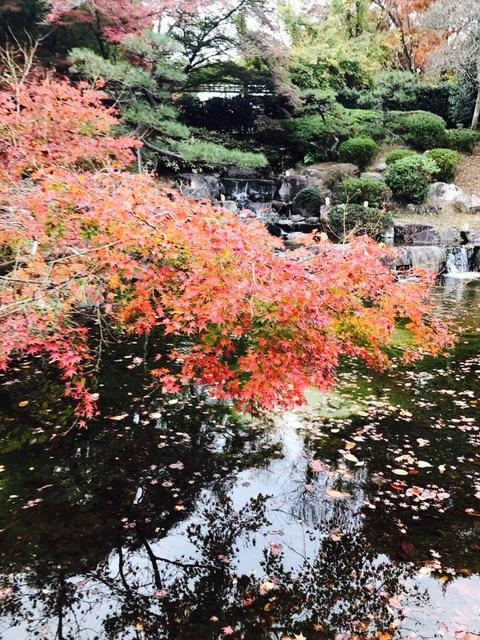 須磨離宮公園_f0204295_19503494.jpg