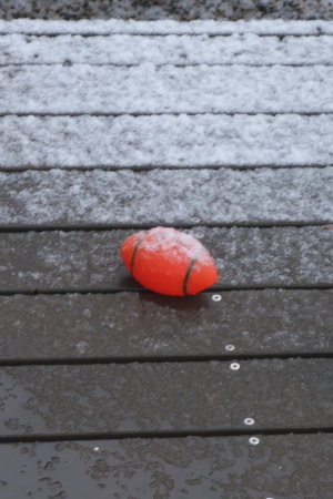 おどろきの初雪 &23日レッスンの備忘録_b0254207_21411638.jpg