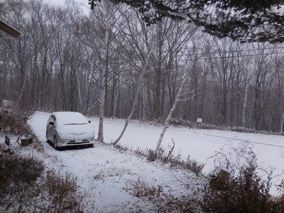 11月24日 木曜  雪  -2度_f0210811_79933.jpg