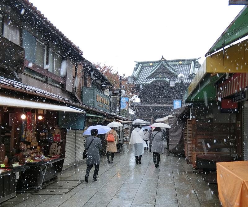 11月24日(木)関東で初雪_d0278912_23384577.jpg