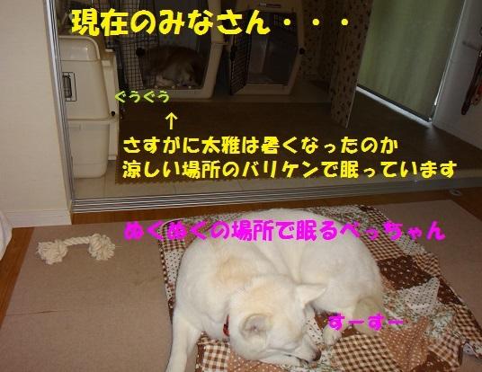 f0121712_10183627.jpg