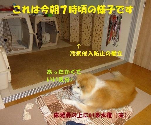 f0121712_11143136.jpg