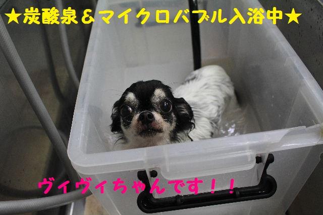雪って怖いのねぇ~・・・_b0130018_15122141.jpg