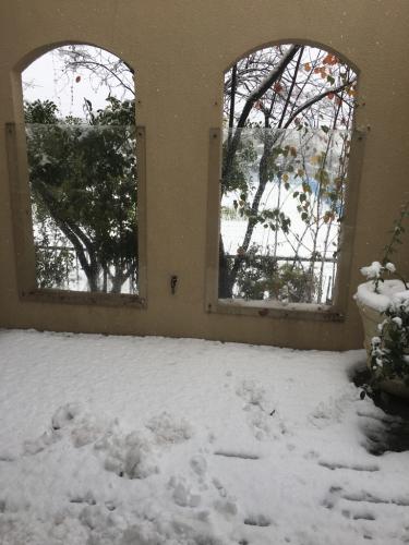 雪_c0146921_11515160.jpg