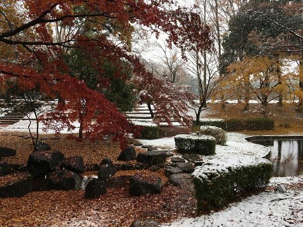 まさかの雪景色_b0100229_12330323.jpg