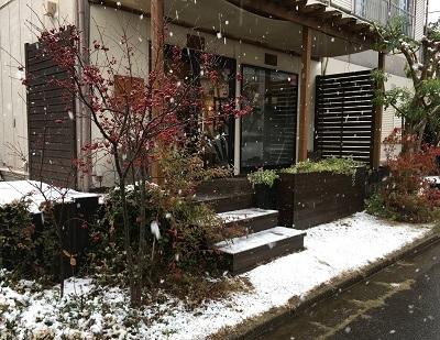 まさかの雪景色_b0100229_12345903.jpg
