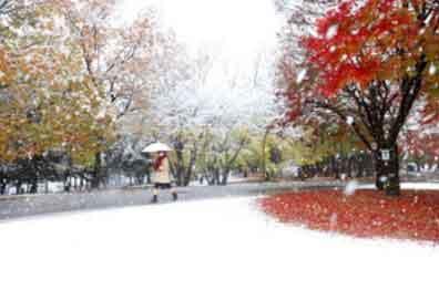 ハテナ?『都心で積雪、11月では初観測』/ 朝日新聞 画像_b0003330_2019971.jpg
