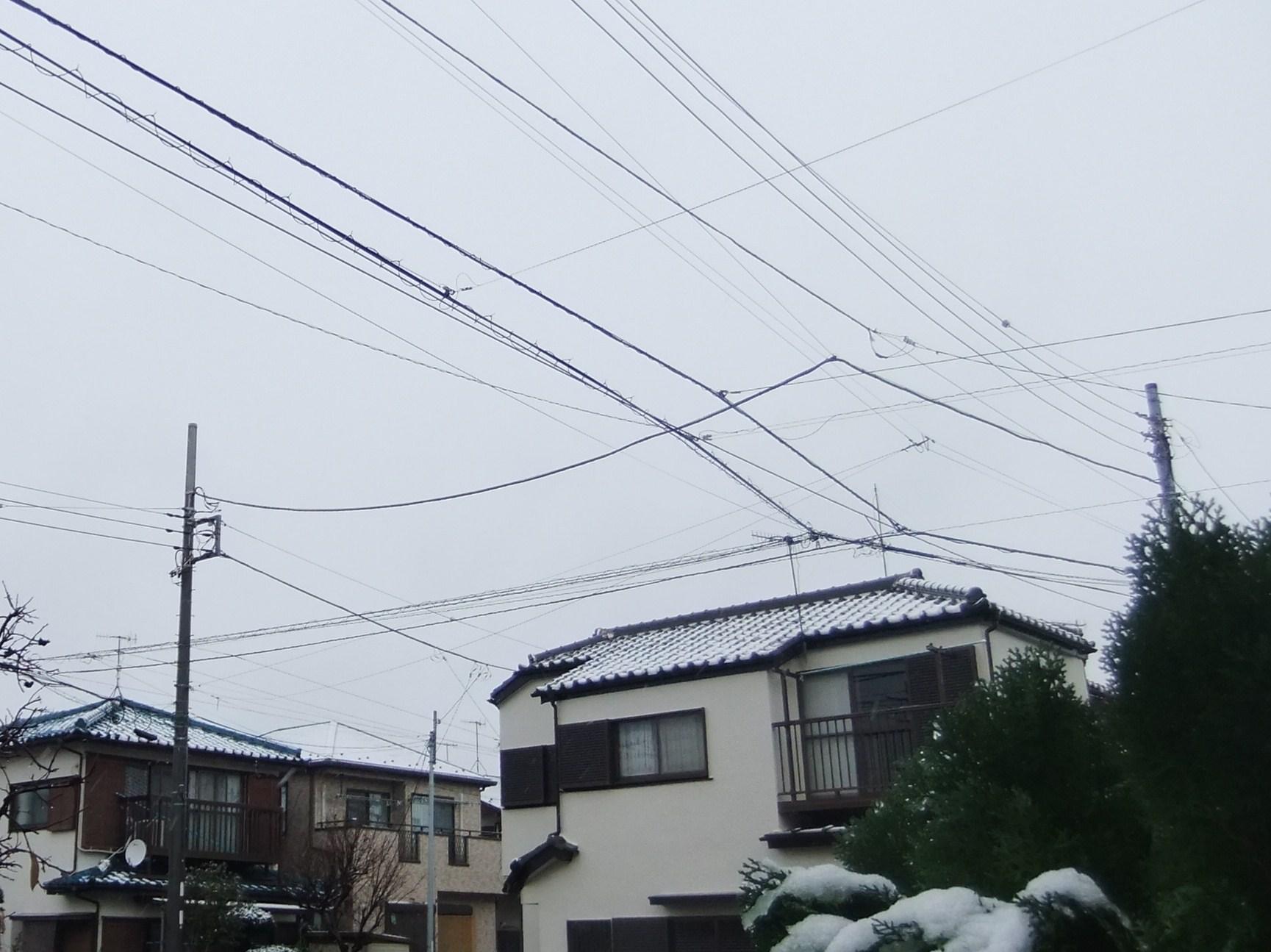 初雪に..驚き!_b0137932_16304898.jpg