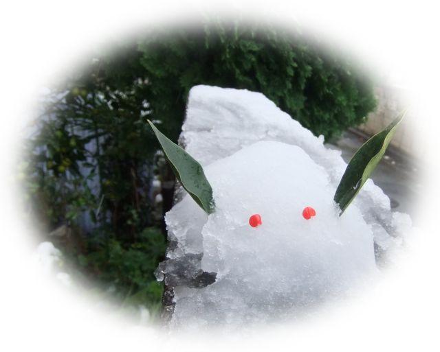 初雪に..驚き!_b0137932_1730884.jpg