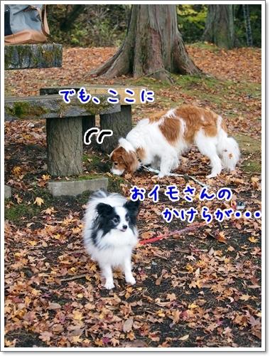 d0013149_22553837.jpg
