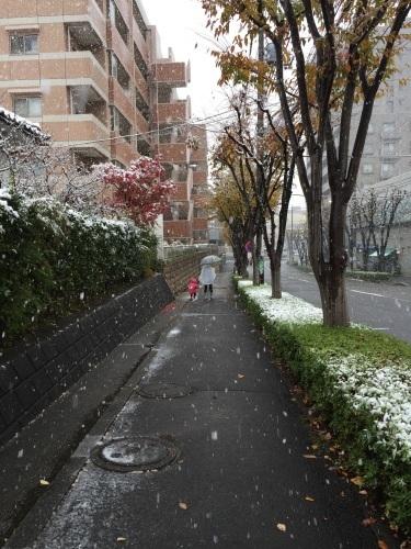 雪です_b0093660_12441854.jpeg