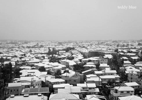 one snowy day  雪の日に_e0253364_23453924.jpg